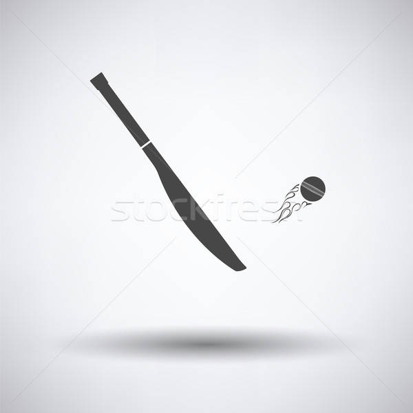 Cricket bat icon grijs bal cartoon Stockfoto © angelp