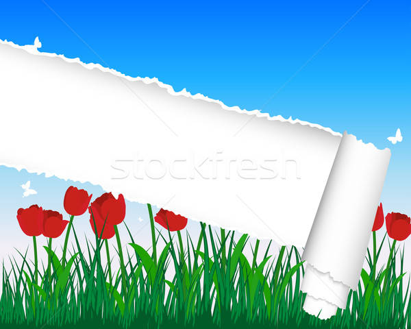meadow silhouettes with ripped stripe Stock photo © angelp