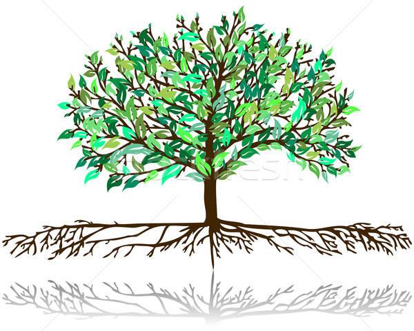 tree pattern Stock photo © angelp
