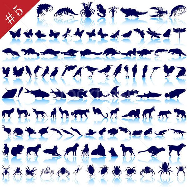 Szett állat sziluettek különböző állatok madarak Stock fotó © angelp