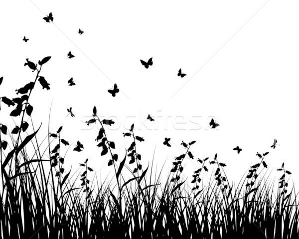 meadow silhouettes Stock photo © angelp