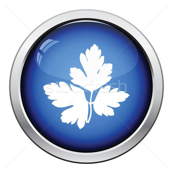 Pietruszka ikona przycisk projektu kuchnia Zdjęcia stock © angelp