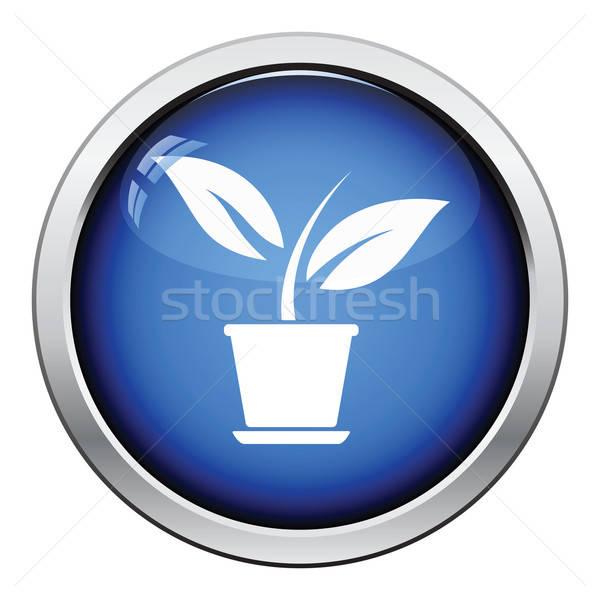 Plant bloempot icon glanzend knop ontwerp Stockfoto © angelp