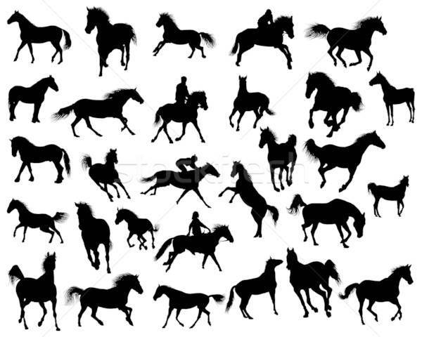 Stock photo: horses silhouettes