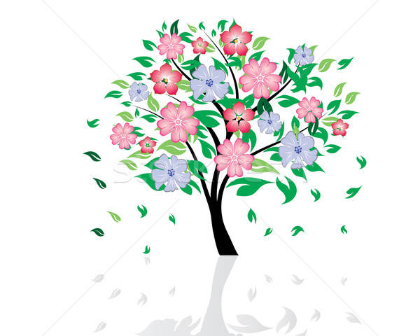 blossom tree Stock photo © angelp