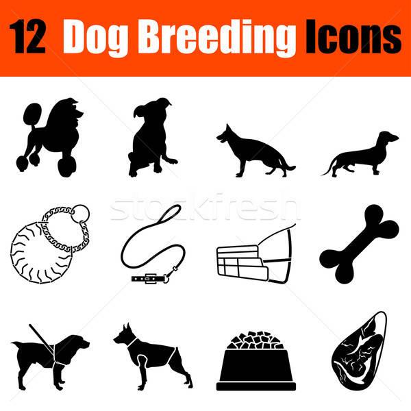 Set Hund Zucht zwölf schwarz Stock foto © angelp