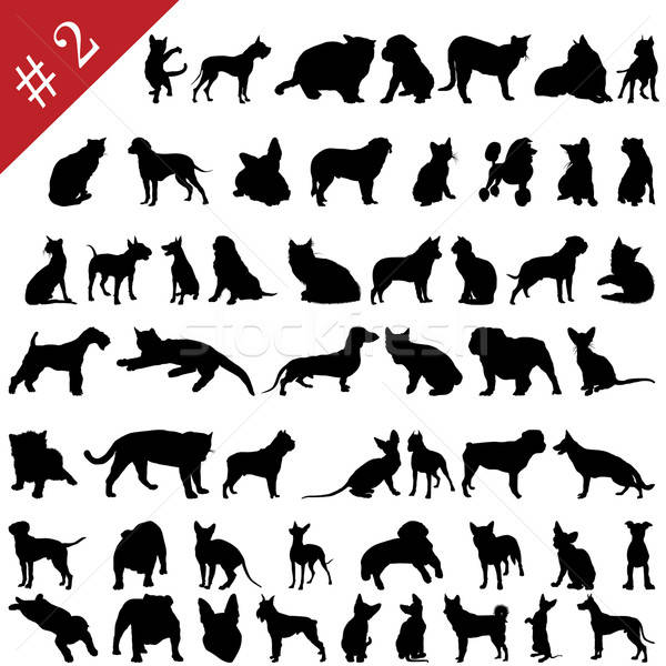 pets silhouettes # 2 Stock photo © angelp