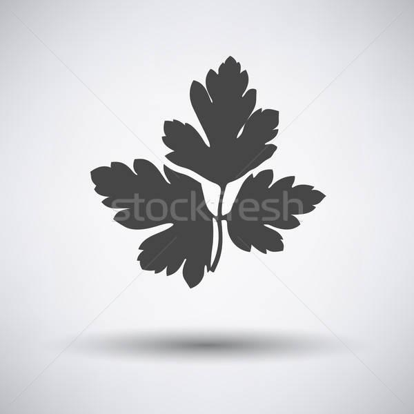 Peterselie icon grijs natuur keuken plant Stockfoto © angelp