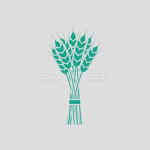 Pszenicy ikona szary zielone wiosną charakter Zdjęcia stock © angelp