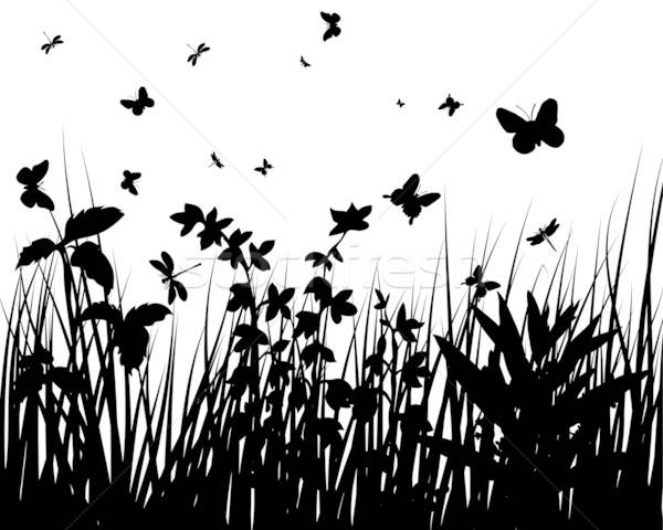 grass silhouettes Stock photo © angelp