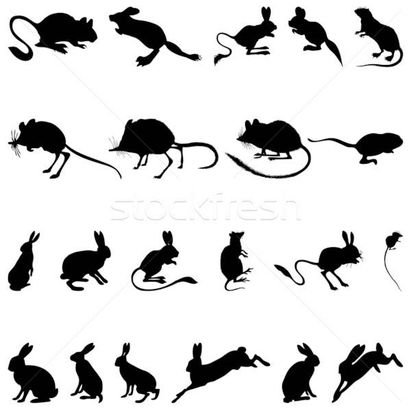 rodents silhouettes Stock photo © angelp