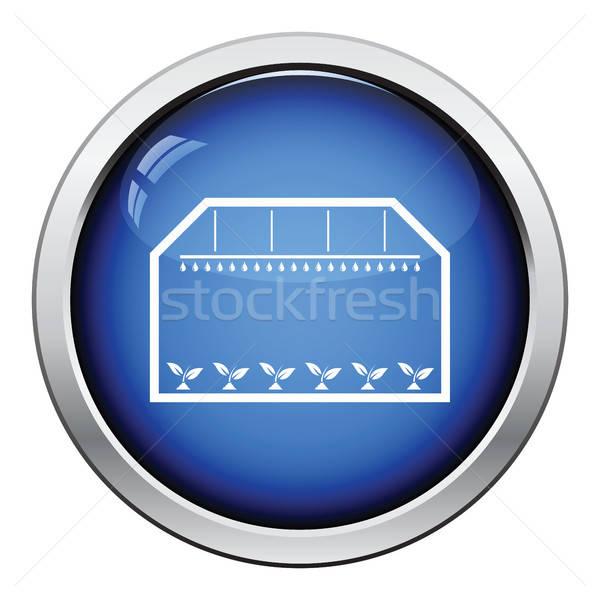 Broeikas icon glanzend knop ontwerp huis Stockfoto © angelp
