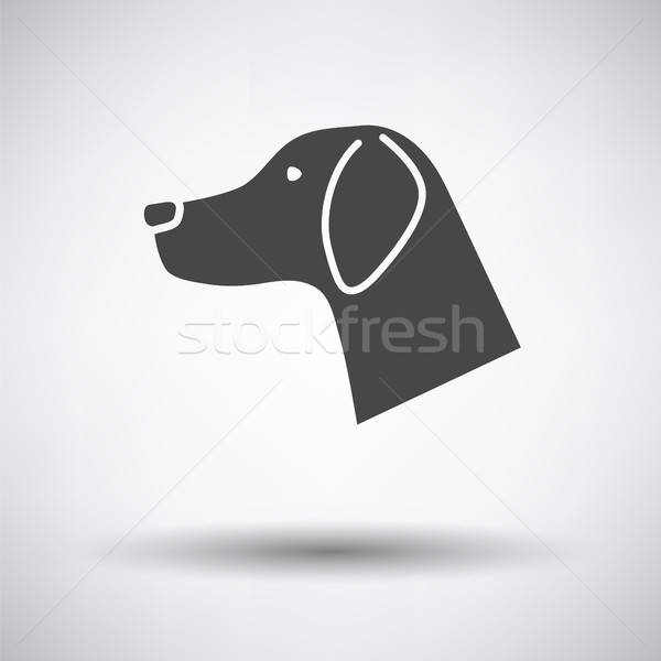 Dog head icon Stock photo © angelp
