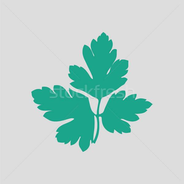 Petrezselyem ikon szürke zöld természet konyha Stock fotó © angelp