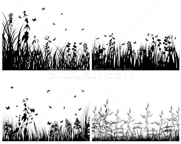 Foto stock: Establecer · hierba · siluetas · cuatro · vector · fondos