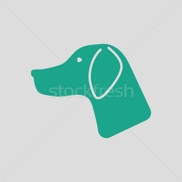 Jachthond icon grijs groene ogen achtergrond Stockfoto © angelp