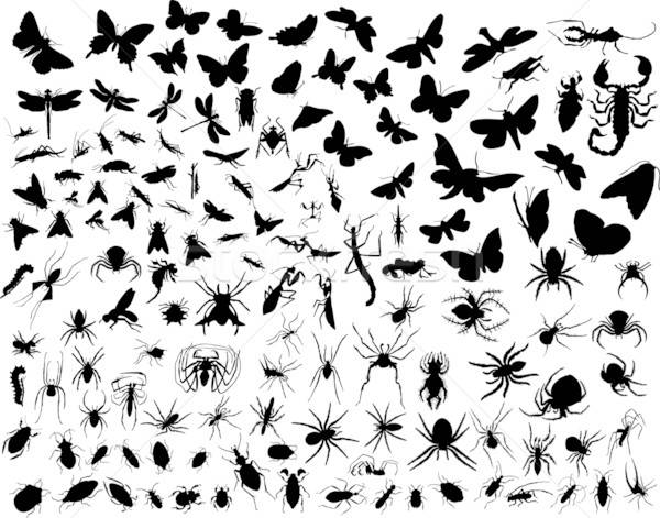Photo stock: Vecteur · insectes · grand · ensemble · différent · silhouettes