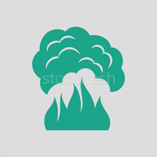 Fire and smoke icon Stock photo © angelp