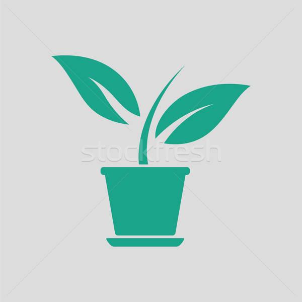 Plantă ghiveci de flori icoană gri verde floare Imagine de stoc © angelp