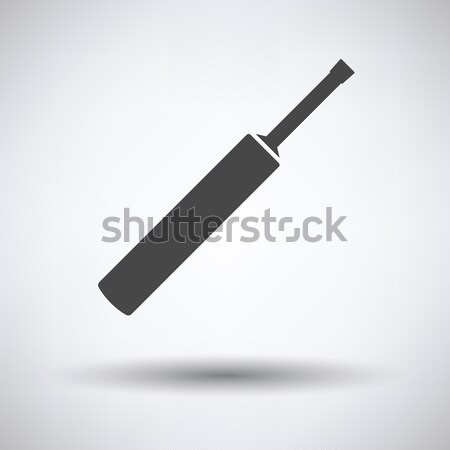 Cricket bat icon Stock photo © angelp