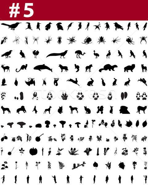 Stock photo: collage silhouettes set