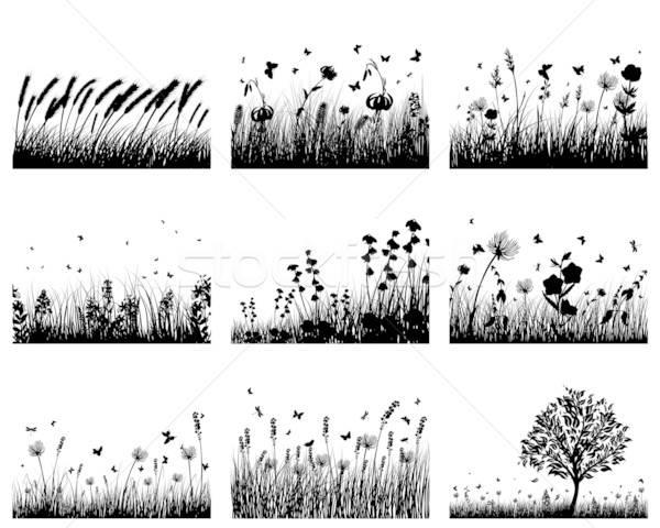 Photo stock: Prairie · silhouettes · vecteur · herbe · horizons