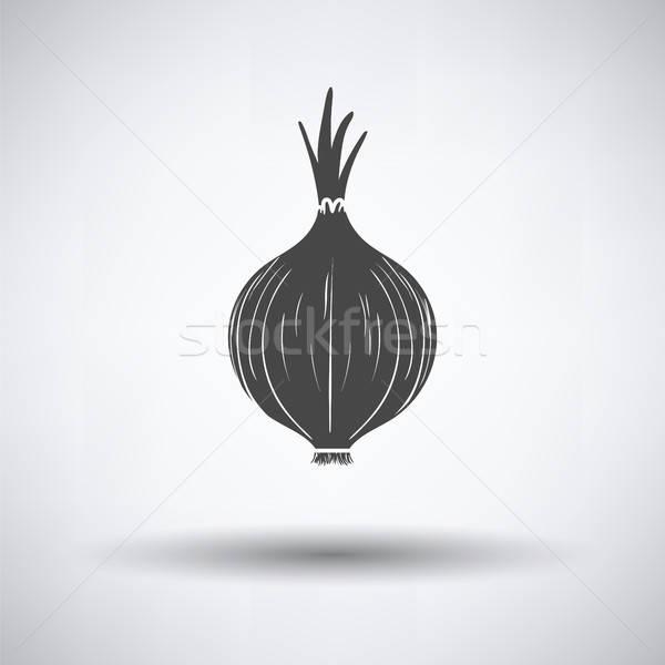 лука икона серый продовольствие цвета приготовления Сток-фото © angelp