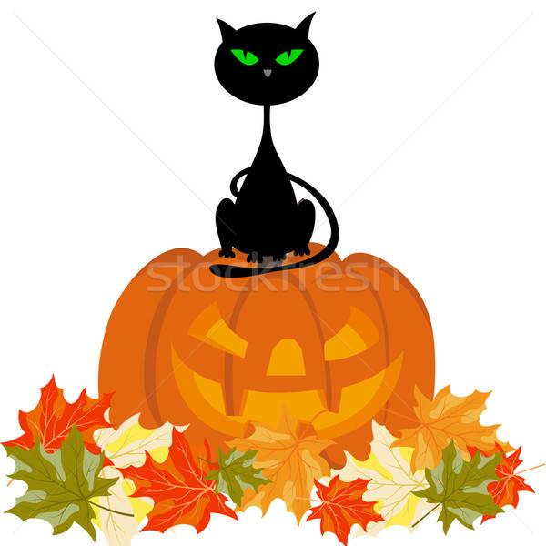Happy halloween card Stock photo © angelp