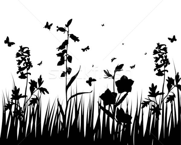 flower silhouettes Stock photo © angelp