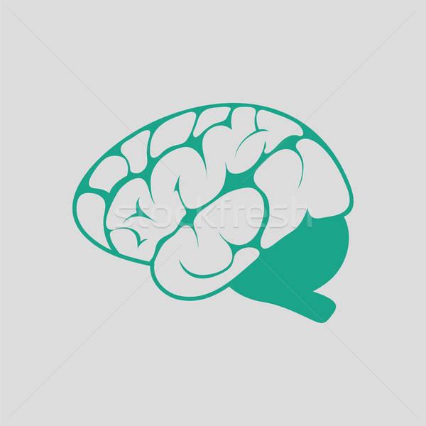 Brain icon Stock photo © angelp