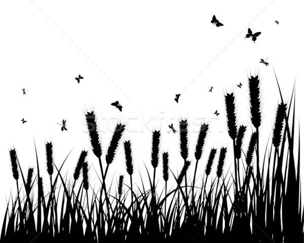 Legelő sziluettek vektor fű összes tárgyak Stock fotó © angelp