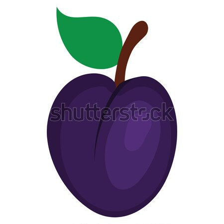 Flat design icon of Plum  in ui colors. Stock photo © angelp