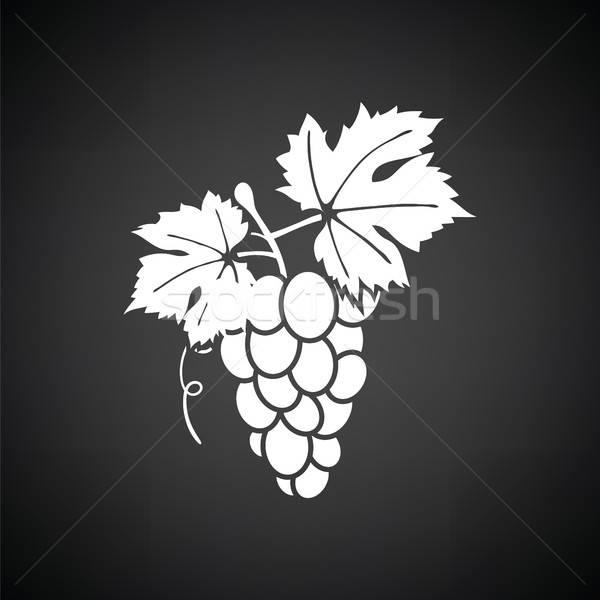 Grape icon Stock photo © angelp