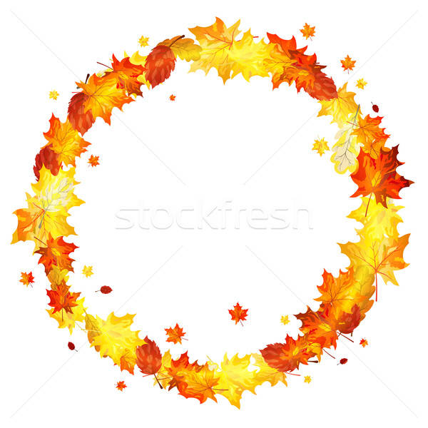 Autumn maple leaves wreath Stock photo © angelp