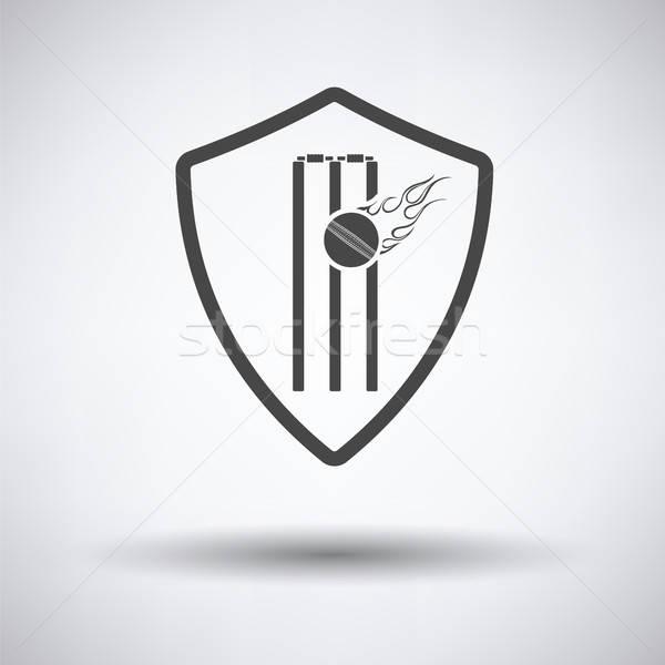 Críquete escudo emblema ícone cinza fogo Foto stock © angelp