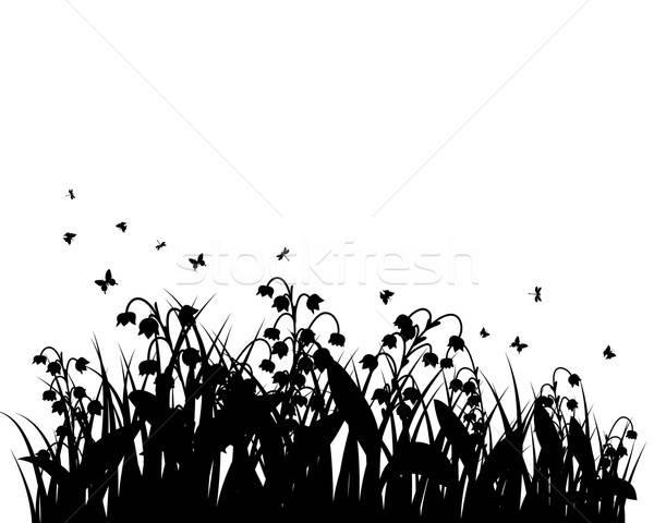 Summer meadow Stock photo © angelp