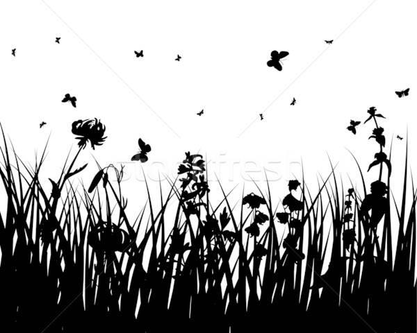 Foto stock: Flor · siluetas · vector · hierba · fondos · insectos