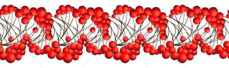 Rowan Berries Seamless Border Stock photo © angelp