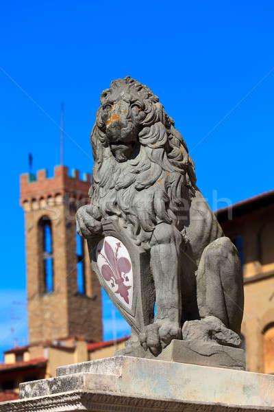 Heraldic lion Stock photo © angelp