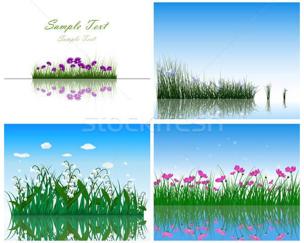 Stockfoto: Gras · water · achtergronden · ingesteld · vlinder · natuur