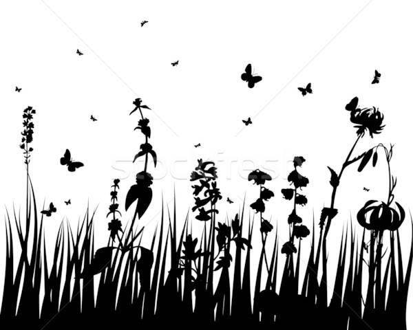 Flor silhuetas vetor grama fundos insetos Foto stock © angelp