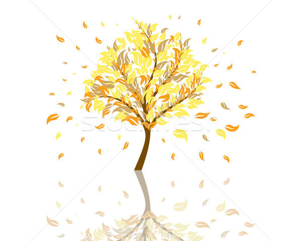 autumn tree Stock photo © angelp