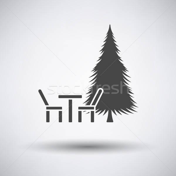 Park Sitz Kiefer Symbol grau Frühling Stock foto © angelp
