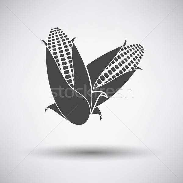 Corn icon Stock photo © angelp