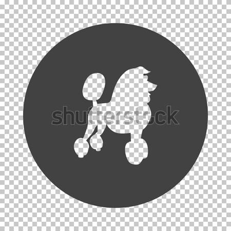 пудель икона черно белые собака счастливым фон Сток-фото © angelp