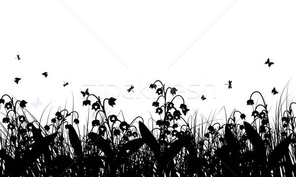 Meadow background Stock photo © angelp