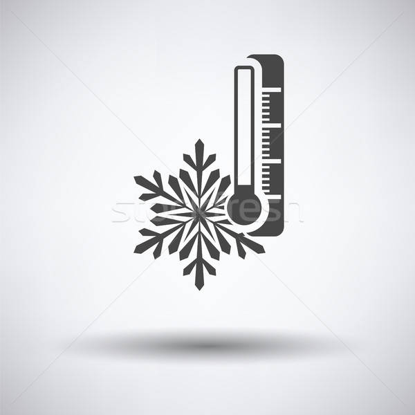 Winter cold icon Stock photo © angelp