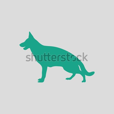 Dachshund dog icon Stock photo © angelp