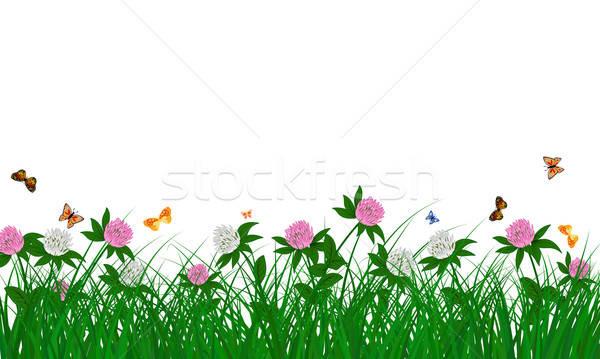 лет луговой цвета бабочки объекты Сток-фото © angelp
