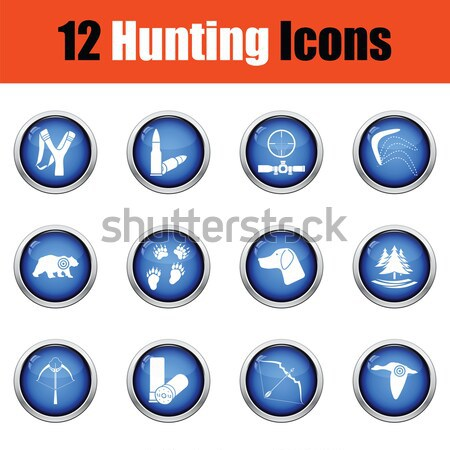 Set of footwear icons.  Stock photo © angelp